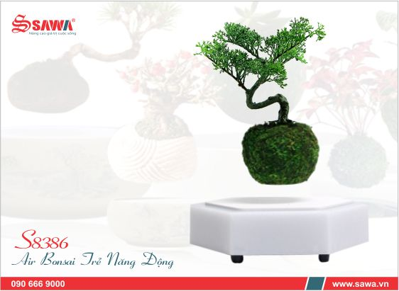 Air bonsai trẻ s8386